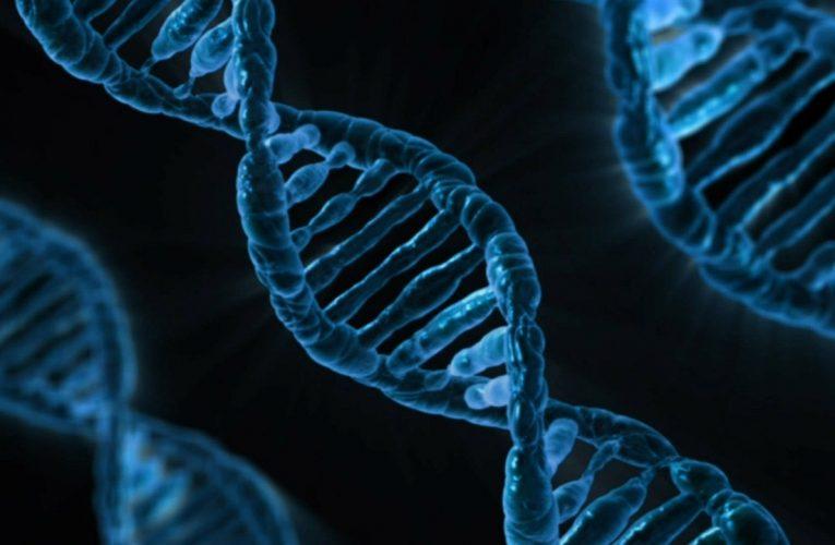 담도암 치료, 유전자 분석으로 정확도 높여