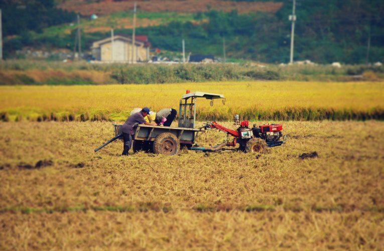 농민들 척추·관절 건강 지키는 스트레칭 3가지